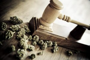 A Broad-Sweeping Bill Introduced to De-Schedule Cannabis