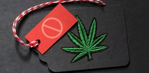 Why Misleading Cannabis Potency Labels Can Be Harmful