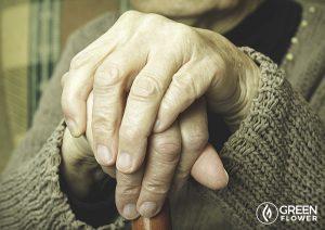 Hemp protein reduces osteoporosis risk.