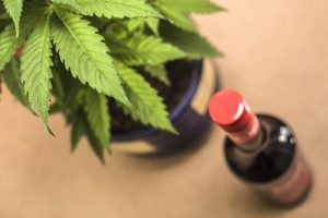 If there's one industry that's clearly out to find cannabis partners, it's the alcohol industry.