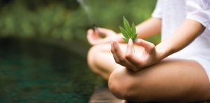 Cannabis and Meditation Share A Most Fascinating Relationship