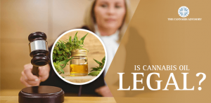 Cannabis oil legal