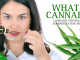 What-is-Cannabis-min