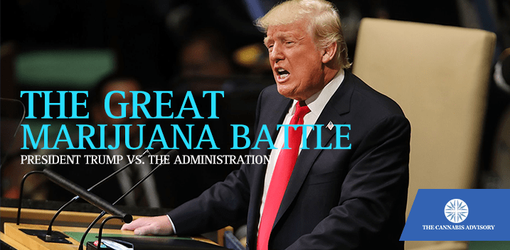 Trump and marijuana
