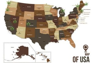 As of writing this article, Michigan was the last state to legalize marijuana.