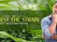 Highest-THC-Strain-min