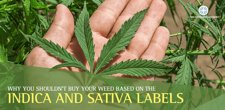 Indica-and-Sativa-Labels-min