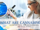 What-are-Cannabinoids-min