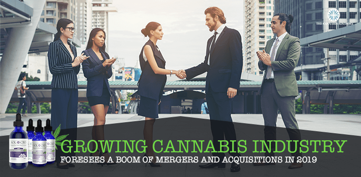 Cannabis industry mergers