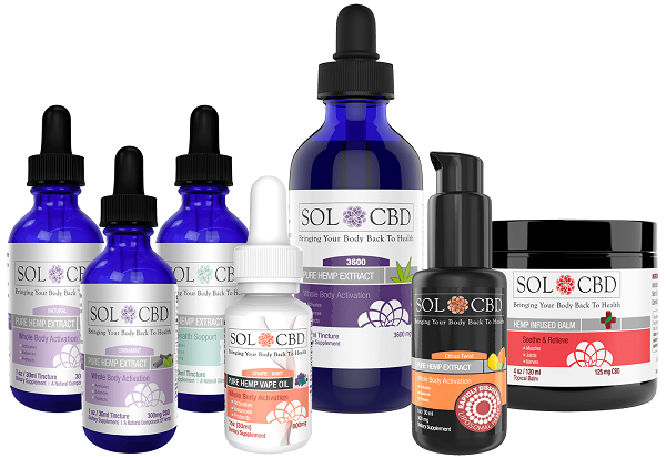 CBD Oil and the Endocannabinoid System