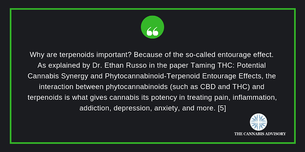 Terpenoids are important because of the entourage effect.