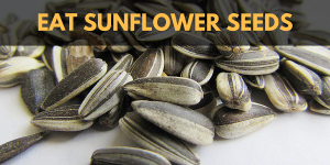 Cannabis and the Munchies: Eat Sunflower Seeds